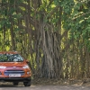 Ford sings Voluntary Greenhouse Gas Reporting Program in India